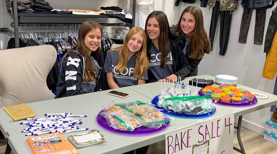 Camp Canadensis bake sale cookies