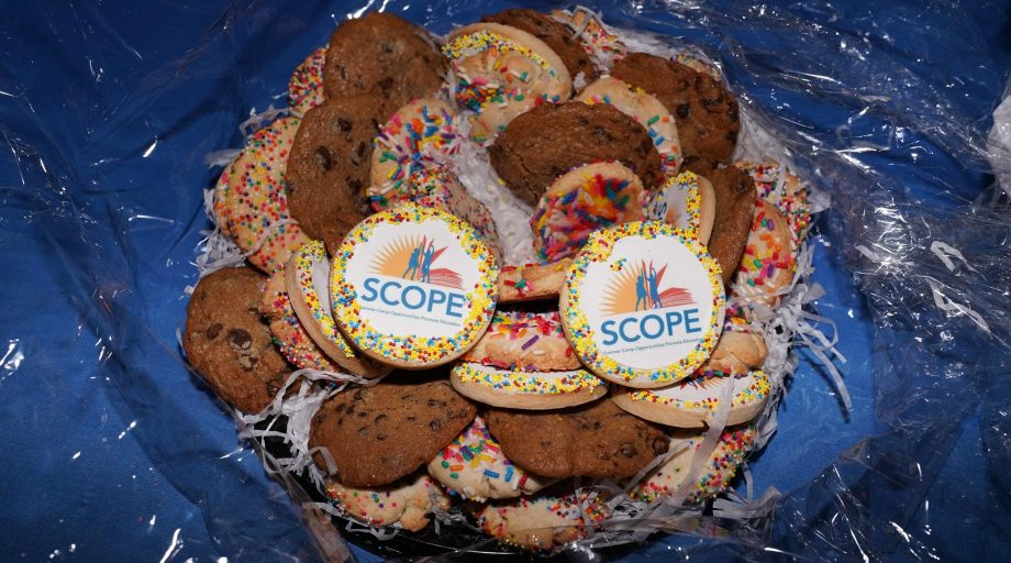 2018 Young Professionals Event cookies