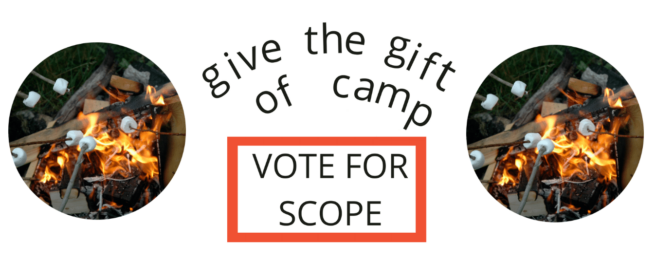 vote for scope